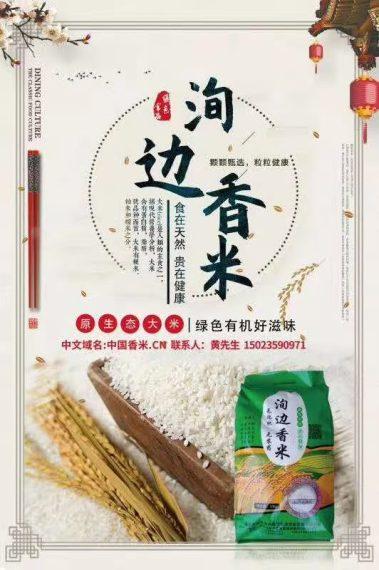 洵边香米 10kg